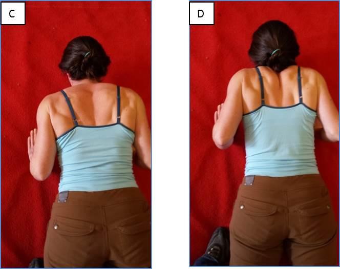Shoulder Movement: Push Up